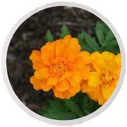 Orange Marigolds   # Round Beach Towel
