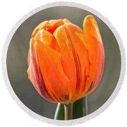 Orange Red Tulip Square Round Beach Towel