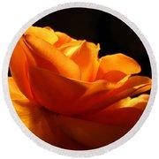 Orange Rose Glowing In The Night Round Beach Towel