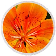 Orange Slices Round Beach Towel
