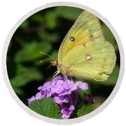 Orange Sulphur Round Beach Towel