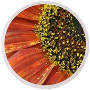 Orange Sunflower Close Up Round Beach Towel