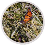 Orange Swallowtail Round Beach Towel