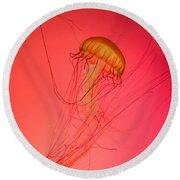 Orange Swimming Jellyfish Round Beach Towel