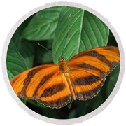 Orange Tiger Butterfly Or Banded Orange Round Beach Towel
