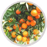 Orange Trees With Fruits On Plantation Round Beach Towel