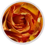 Orange Variegated Rose Round Beach Towel