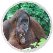 Orangutan Family Round Beach Towel