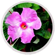 Orchard Colored Mandevilla Round Beach Towel