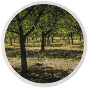 Orchard In West Michigan No. 279 Round Beach Towel