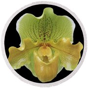 Orchid 003 Round Beach Towel