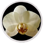 Orchid 12 Round Beach Towel