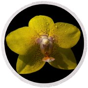 Orchid 15 Round Beach Towel