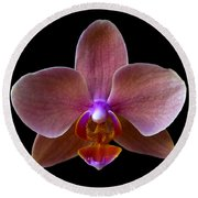 Orchid 17 Round Beach Towel