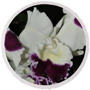 orchid 221 Cattleya Moscombe 'The King'  1 of 3 Round Beach Towel