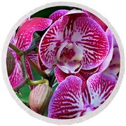 Radiant Orchid  Round Beach Towel