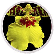 Orchid 33 Round Beach Towel