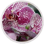 Orchid Art Round Beach Towel