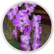 Orchid Beauties Round Beach Towel