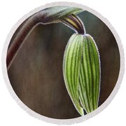 Orchid Bud Round Beach Towel