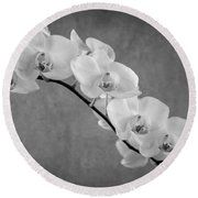 Orchid Bw Round Beach Towel by Hannes Cmarits