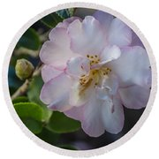 Orchid Camellia Round Beach Towel