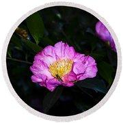 Orchid Camellia Pink - Camellia Sasanqua Round Beach Towel