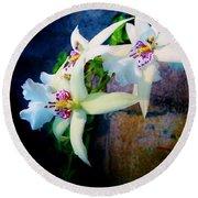 Orchid Cascade Round Beach Towel