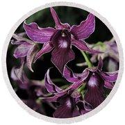 Orchid Dendrobium Lavender Star 204 Round Beach Towel
