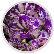 Orchid Grouping Round Beach Towel