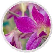 Orchid - Haliimaile Spring Pink Round Beach Towel