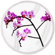 Orchid In White  Round Beach Towel