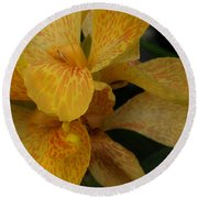 Canna Lily Round Beach Towel