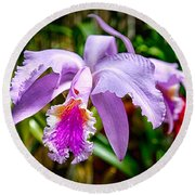 Orchid Life Round Beach Towel