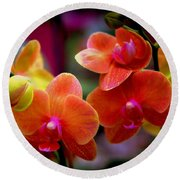 Orchid Melody Round Beach Towel by Karen Wiles