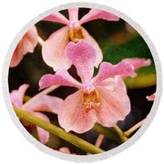 Orchid Number 17 Round Beach Towel
