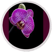 Orchid On Black Background Round Beach Towel