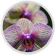 Orchid One Round Beach Towel
