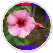 Orchid Pink Flower Photographed At Costa Rica Sensual Smile Graphic Dital Painted Background Ideal Round Beach Towel