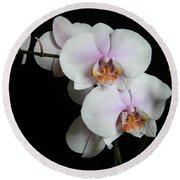Orchid Portrait Round Beach Towel