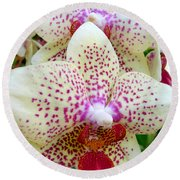 Orchid Series 5 Round Beach Towel
