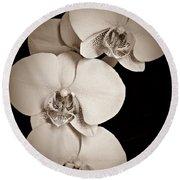 Orchid Trio Sepia Round Beach Towel