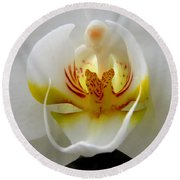Orchid Upclose Abstract Round Beach Towel