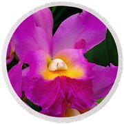 Orchid Variations 1 Round Beach Towel by Rona Black