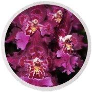 Orchid Vuylstekeara Aloha Passion Round Beach Towel