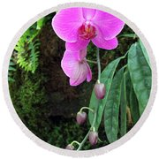 Orchid2705 Round Beach Towel