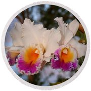 Orchid Elsie Sloan Round Beach Towel