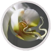 Orchid's Face Round Beach Towel