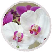 Orchids Floral Art Prints White Pink Orchid Flowers Round Beach Towel