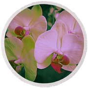 Orchids In Pink And Green Round Beach Towel